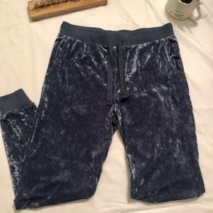Aerie Muted Blue Velvet Joggers - Small